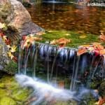 Air Terjun dan Fountain Untuk Taman Yang Mungil