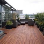 Membangun Taman Diatas Atap (Roof Garden)