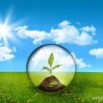 Cara Bijak Untuk Menghemat Pemakaian Energi Di Rumah