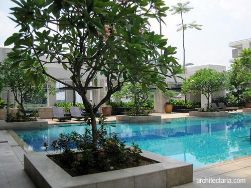 tips menanam pohon di rumah pt architectaria media cipta