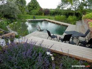 kolam ikan dengan deck kayu