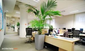 ruang kerja ramah lingkungan 3