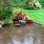 Cara Mengatasi Genangan Air di Halaman Rumah
