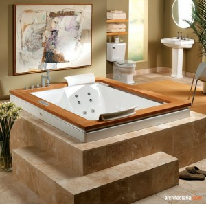 jacuzzi bathroom 2
