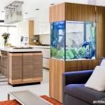 Membuat dan Mengkreasikan Aquarium Sebagai Salah Satu Dekorasi Ruangan