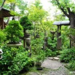 Dua Ornamen Penting untuk Melengkapi Taman Ala Jepang: Arbor dan Pagar