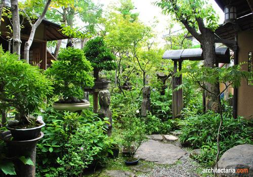 Dua Ornamen Penting Untuk Melengkapi Taman Ala Jepang Arbor