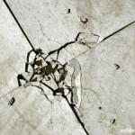 Problem Pada Lantai dan Pondasi Serta Cara Mengatasinya