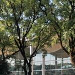 Foster + Partners Menggabungkan Struktur Beton Melengkung dengan Kaca Baru pada Balai Kota Buenos Aires