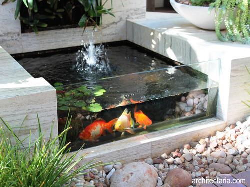 Membuat Kolam Ikan Sendiri Di Taman Di Rumah Pt