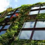 Desain Taman Vertikal, untuk Penghijauan yang Lebih Efektif dan Efisien