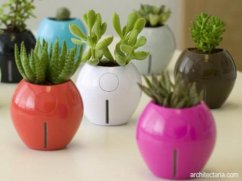 Berkreasi Dengan Pot Bunga Edisi I Pt Architectaria