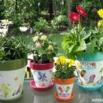 Berkreasi dengan Pot Bunga Edisi II
