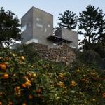 Desain Rumah Dari Batu yang Berdiri Diantara Pohon Citrus di Pulau Jeju Karya Doojin Hwang