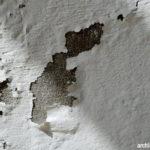 Cara Tepat Agar Dinding Rumah Tidak Lembab