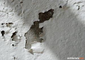 dinding-lembab-1