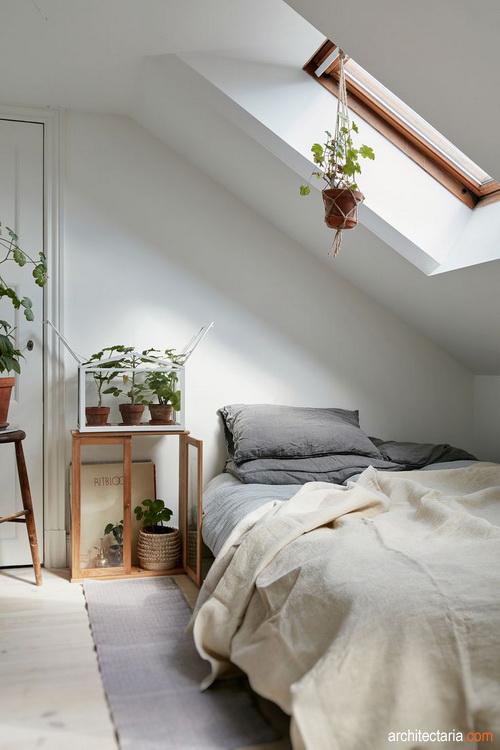 Tips Membuat Ruangan Sempit Tanpa Jendela Tetap Nyaman